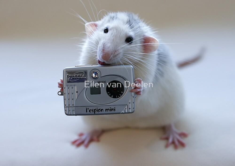 Its not easy being a good photographer! by Ellen van Deelen