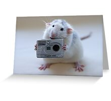 Its not easy being a good photographer! Greeting Card
