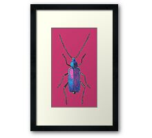 Blue insect drawing Framed Print