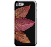 Pink and Orange Leaves  iPhone Case/Skin