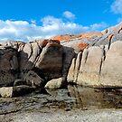 Tide Pool - Tasmania by Jessica Fittock