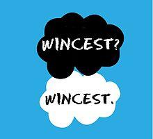 Wincest - TFIOS by Susanna Olmi