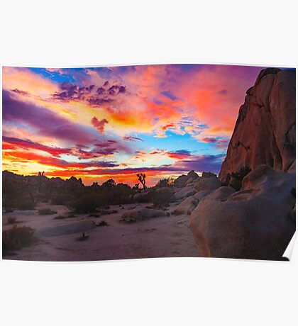 Joshua Tree National Park Sunset 1 Poster