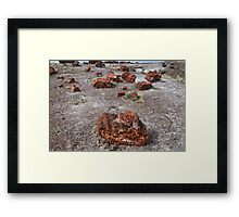 Petrified Wood, Petrified Forest National Park Framed Print