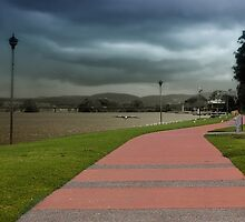 Taree take a walk 01 by kevin chippindall