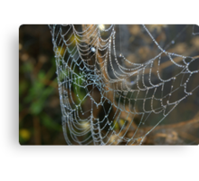 Web jewels Metal Print