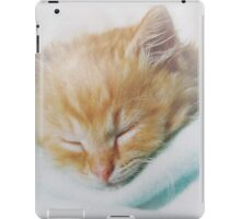 Cozy Kitty iPad Case/Skin