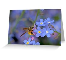 Bee and Forget Me Not Flowers Greeting Card