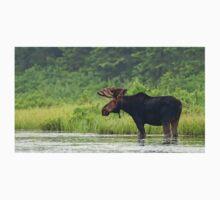 Bull Moose - Algonquin Park, Canada Kids Tee