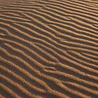 patterns, st cyrus beach by codaimages