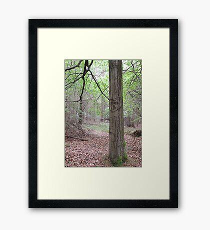 Adele 4 Les Framed Print