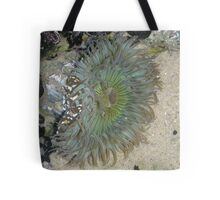 Blue Green Sea Anemone Tote Bag