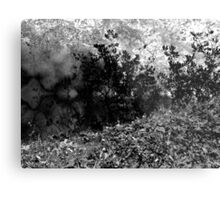 Abstract Nature takes Form Metal Print