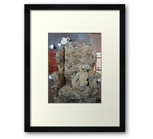 Aloysius  Framed Print