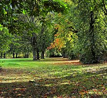West End Park in Alloa by 242Digital