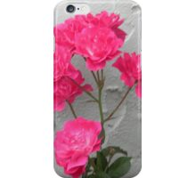 The Rose Againt Stucco iPhone Case/Skin