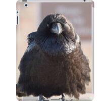 Full Fluff iPad Case/Skin