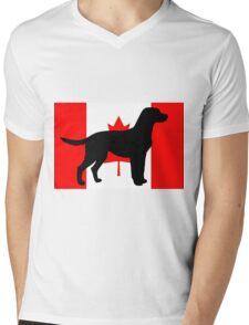 LR silhouette on flag Mens V-Neck T-Shirt