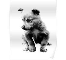 Sad Face Puppy Dog Digital Engraving Poster