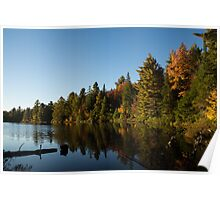 Fall Forest Lake - Reflection Tranquility Poster