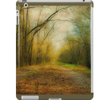 Winter Path iPad Case/Skin
