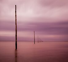 Holy Island causeway markers by davidpreston