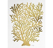 Gold Coral Photographic Print