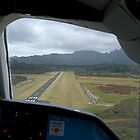 You are clear to land......Great Barrier Island........! by Roy  Massicks