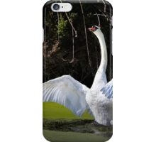 Swan Wings Spread iPhone Case/Skin