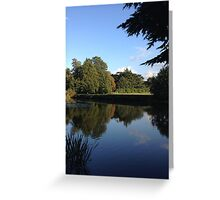 Pond Reflection Greeting Card