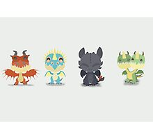 "Tiny Dragons ""How To Train Your Dragon"" Photographic Print"