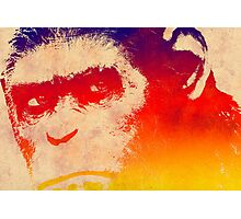 Dawn of the Planet of the Apes  Photographic Print