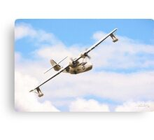 Catalina Rescue Canvas Print