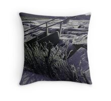 Well below Zero Throw Pillow
