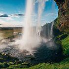 Seljalandsfoss, Iceland by Alessio Michelini