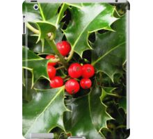 Red and Green iPad Case/Skin