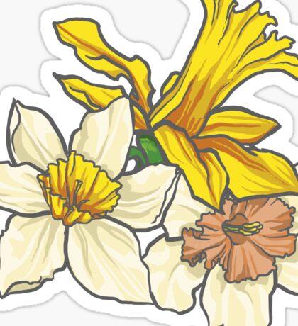 Daffodil - March Birth Flower Sticker