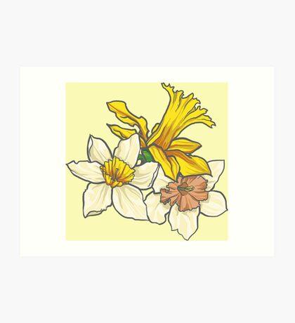 Daffodil - March Birth Flower Art Print