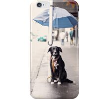 The Dog iPhone Case/Skin