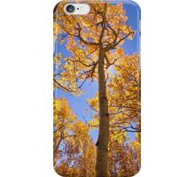 """Aspen#7"" iPhone Case/Skin"