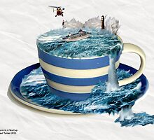 Storm In A teacup by pault55