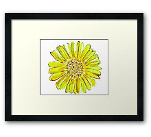 Bright and big yellow flower Framed Print