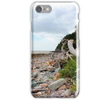 A Wind Swept Coastline iPhone Case/Skin