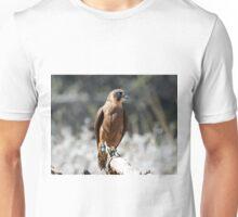Little Falcon. Unisex T-Shirt