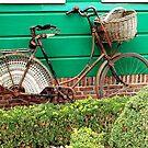 Granny's bike by Arie Koene