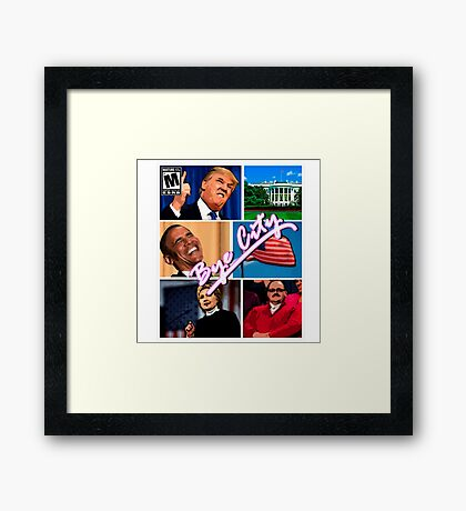 politics Framed Print