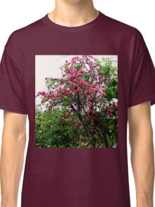 Pink Tree Blossoms Classic T-Shirt