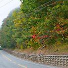 Route 5 by Carolyn Clark