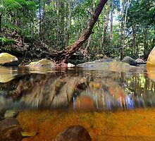 Above and below Daintree by Dean Jewell