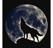 Wolf, moon, fantasy, wild, dog, wolves, sky, night Photographic Print